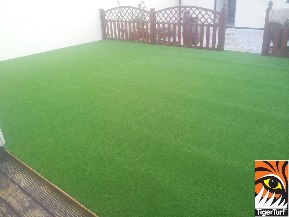 synthetic grass in family garden 3.jpg