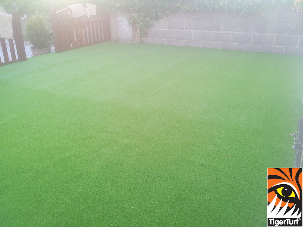 synthetic grass in family garden 3 (1).jpg