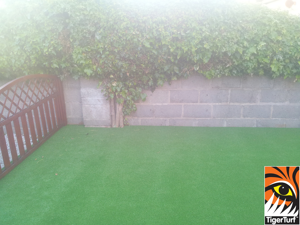 synthetic grass in family garden 7.jpg