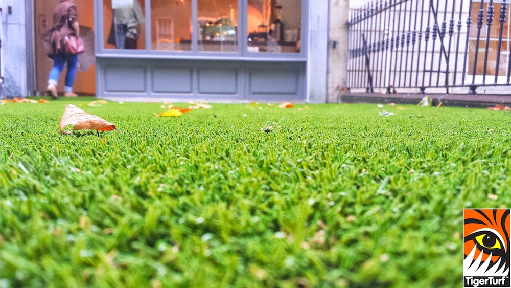 synthetic grass dublin cafe 20.jpg