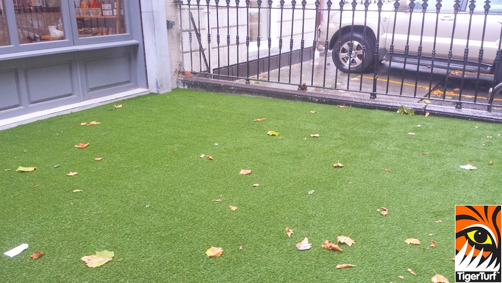 synthetic grass dublin cafe 1.jpg