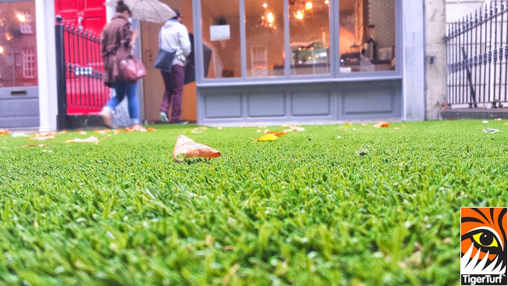 synthetic grass dublin cafe 18.jpg