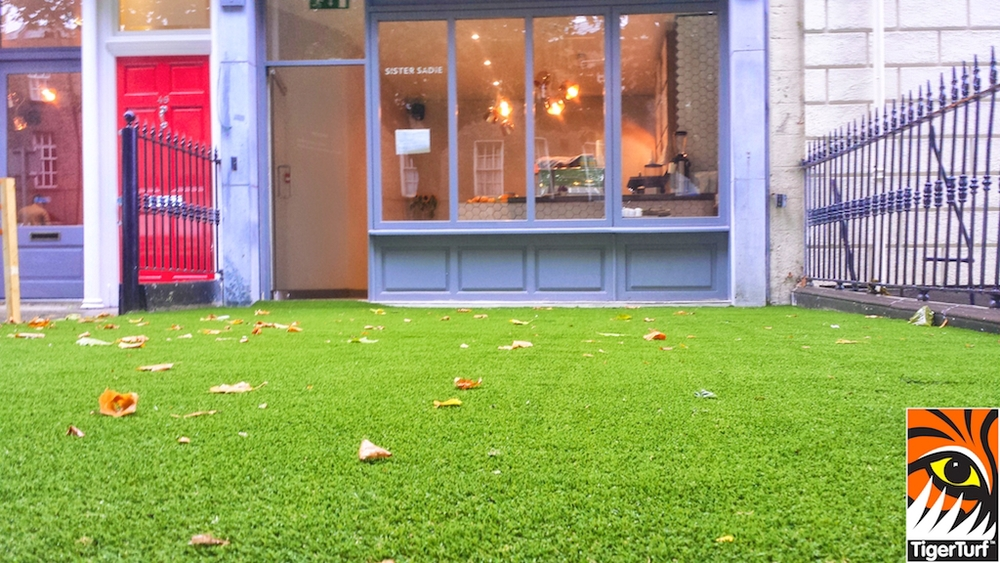 synthetic grass dublin cafe 11 (1).jpg