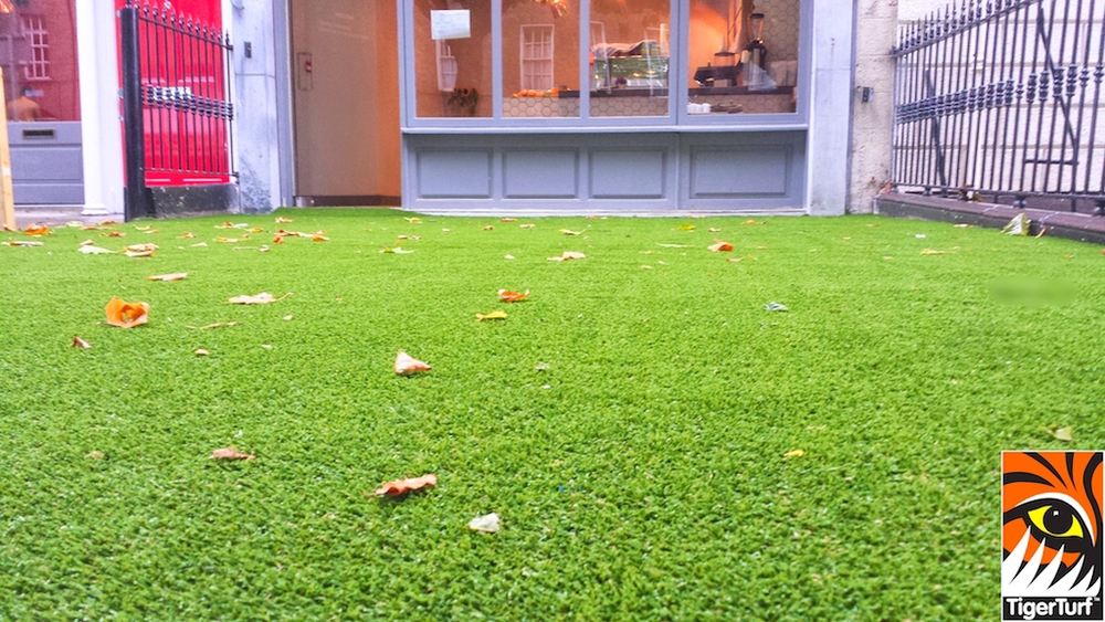 synthetic grass dublin cafe 10 (1).jpg