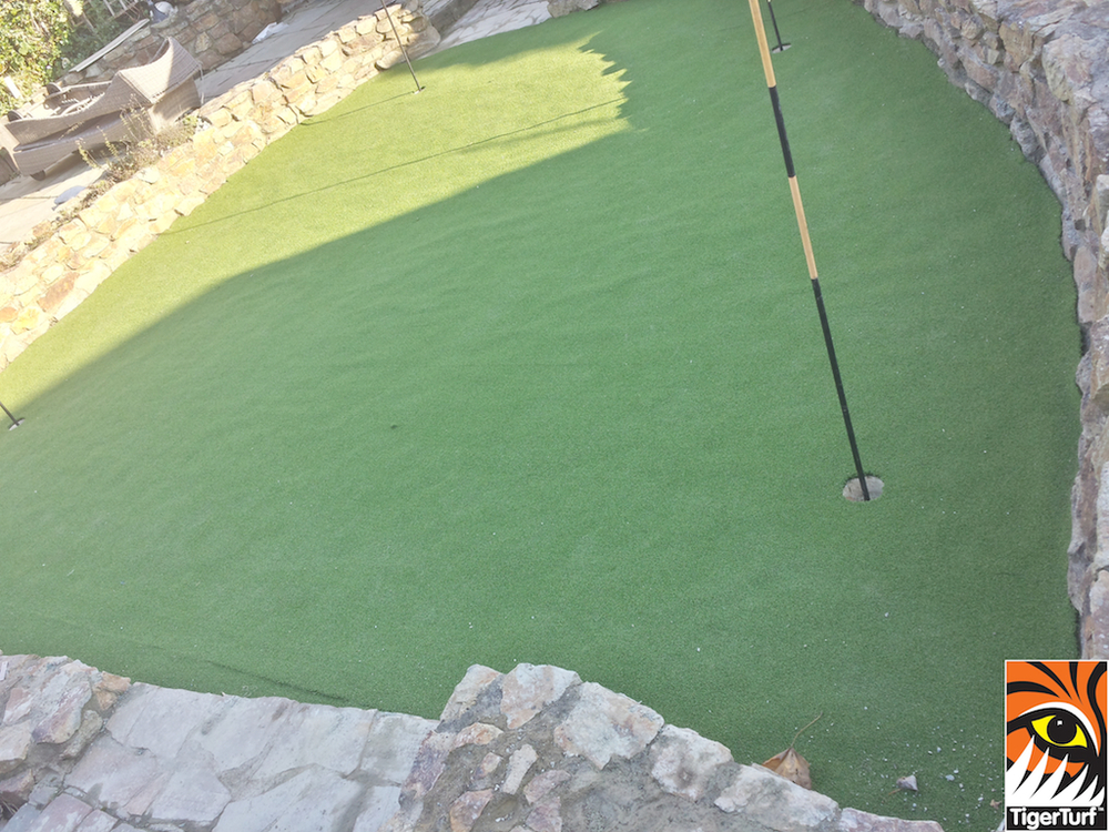 new synthetic golf green