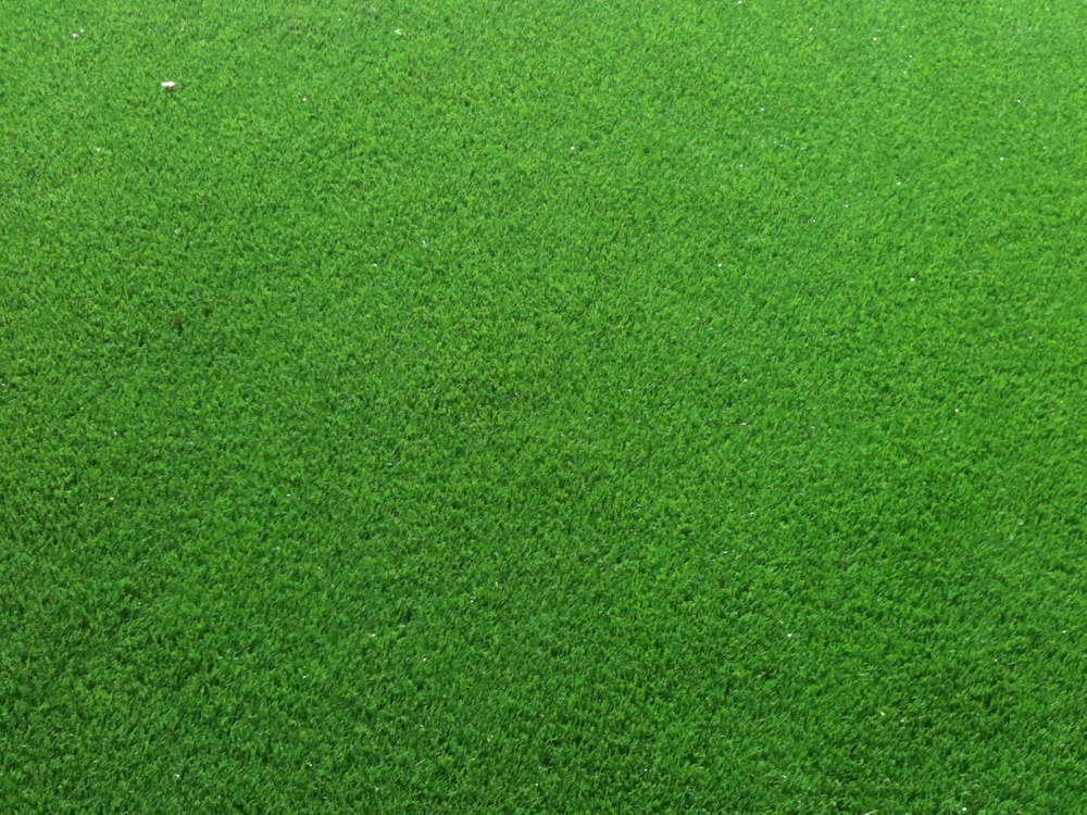 close-up of TigerTurf Lawn Turf