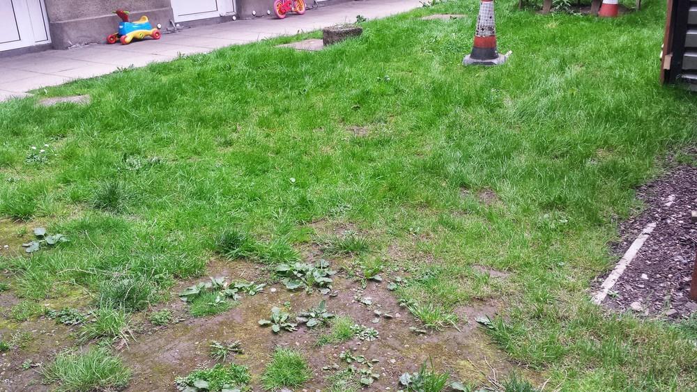 muddy old lawn