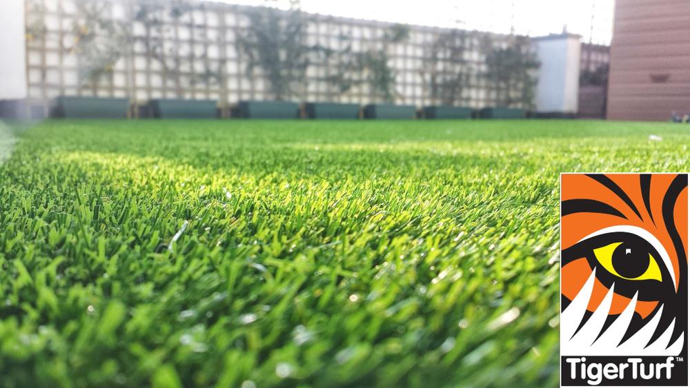 Synthetic grass on Balcony 4 (1).jpg