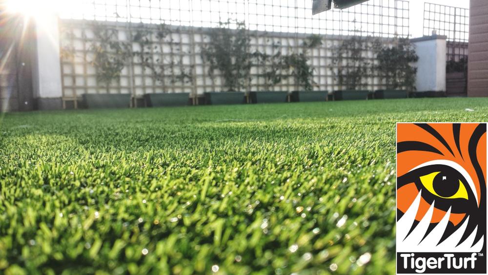 Synthetic grass on Balcony 6 (1).jpg