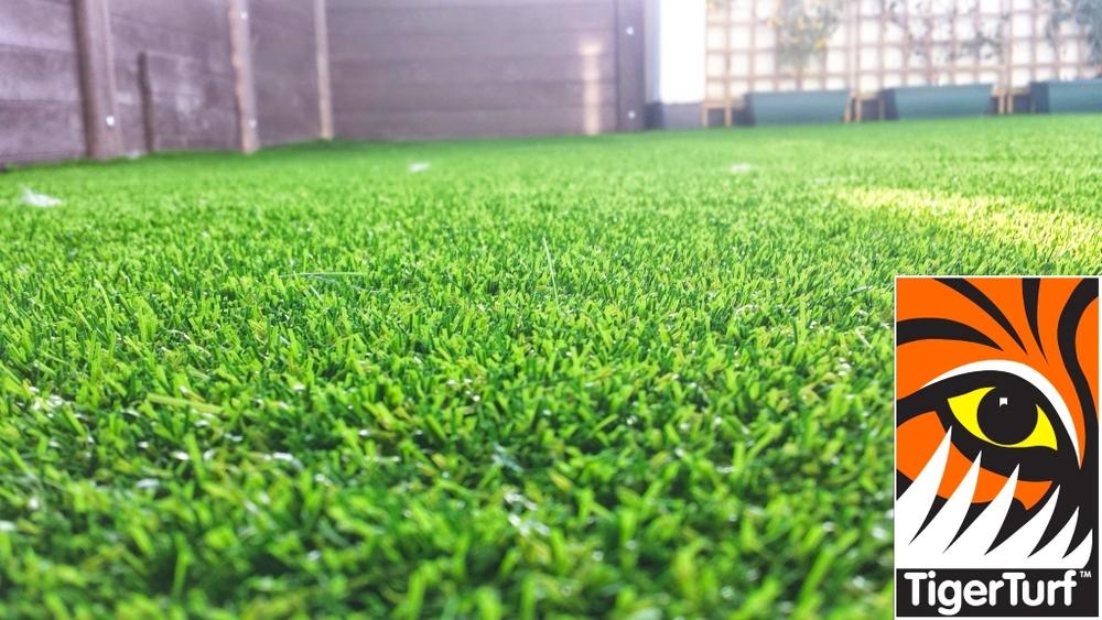 Synthetic grass on Balcony 8 (1).jpg