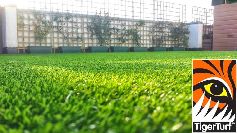 Synthetic grass on Balcony 2.jpg