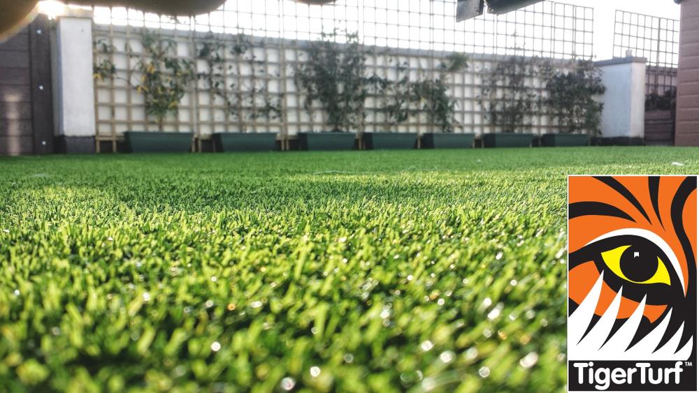 Synthetic grass on Balcony 7 (1).jpg