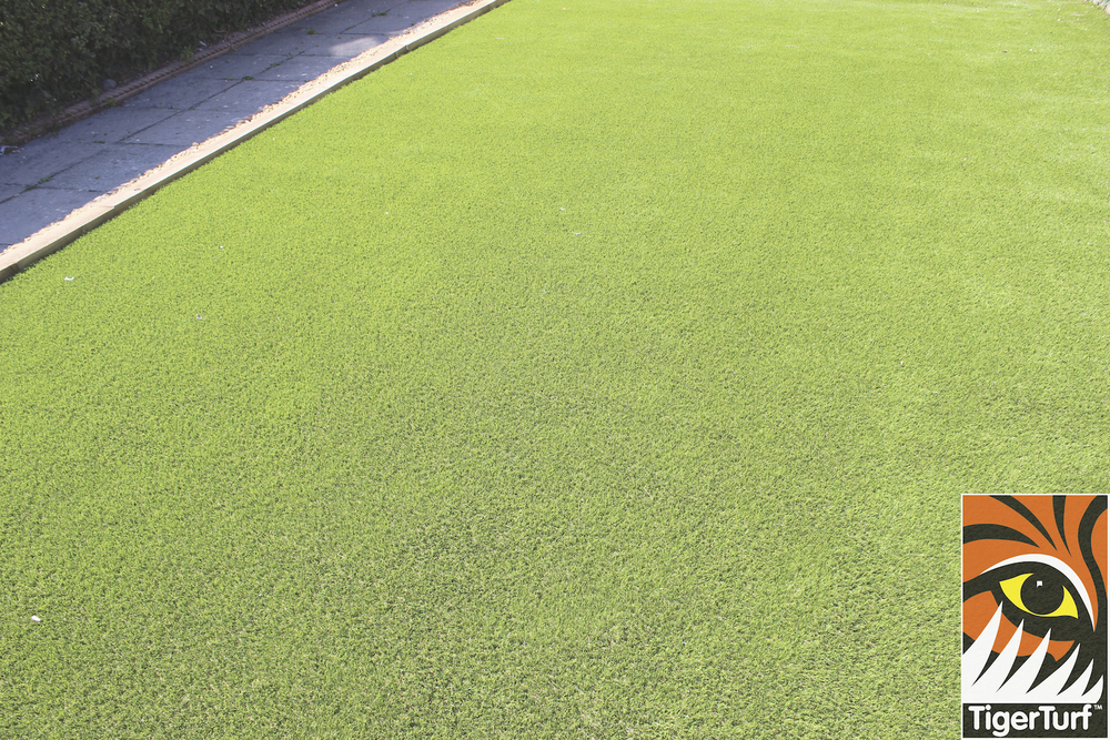 Finesse Deluxe from TigerTurf
