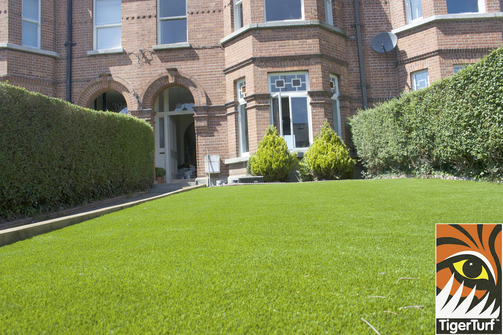 front garden of proper in artificial TigerTurf Lawn