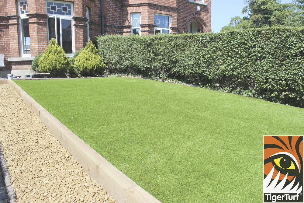 TigerTurf lawn from approved installers