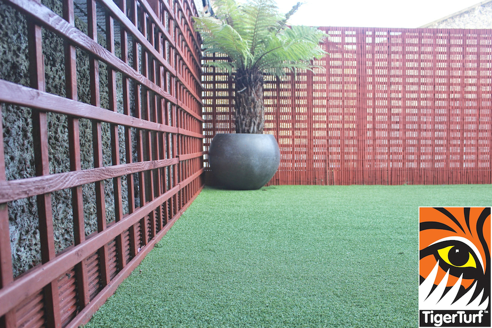 Synthetic grass in front lawn 102.jpg