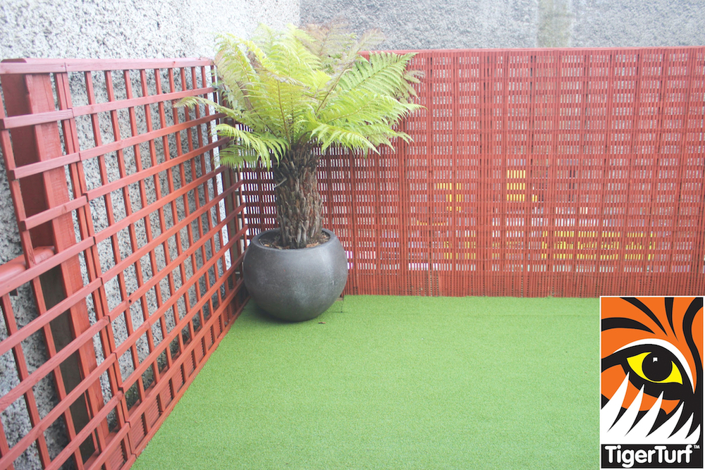 Synthetic grass in front lawn 117.jpg