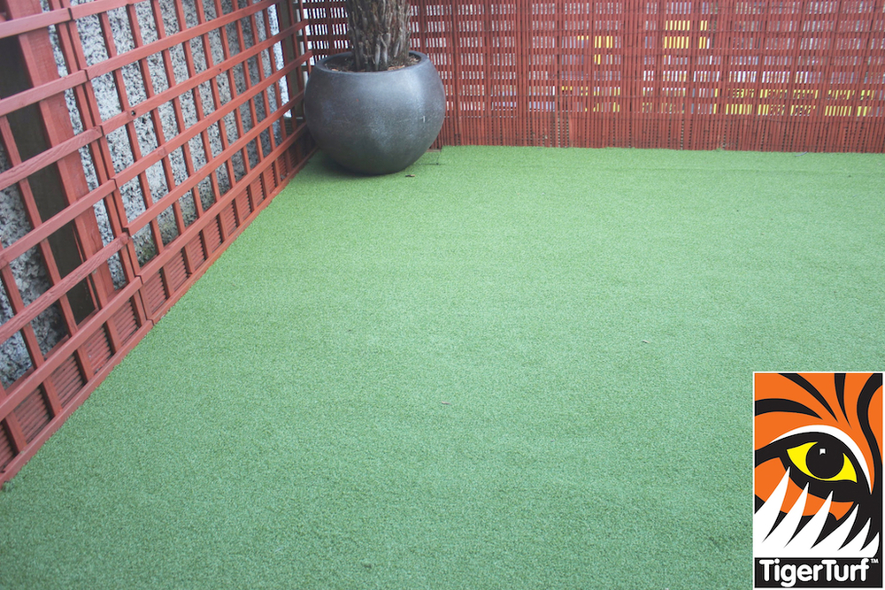 Synthetic grass in front lawn 114.jpg