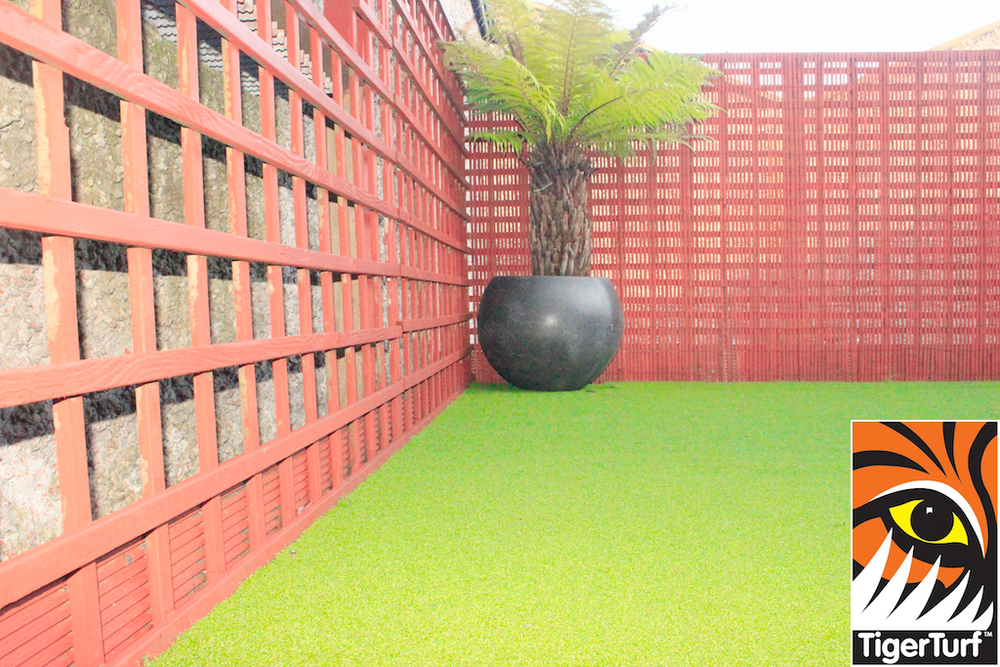 Synthetic grass in front lawn 95.jpg