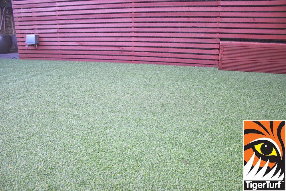 Synthetic grass in front lawn 57.jpg