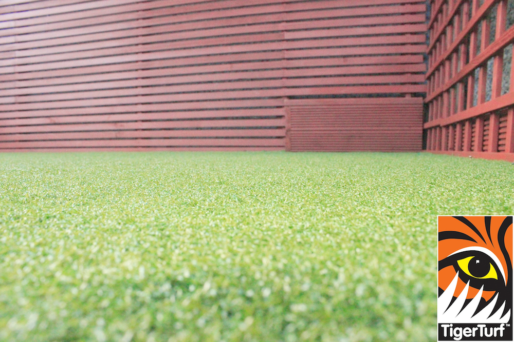 Synthetic grass in front lawn 69.jpg