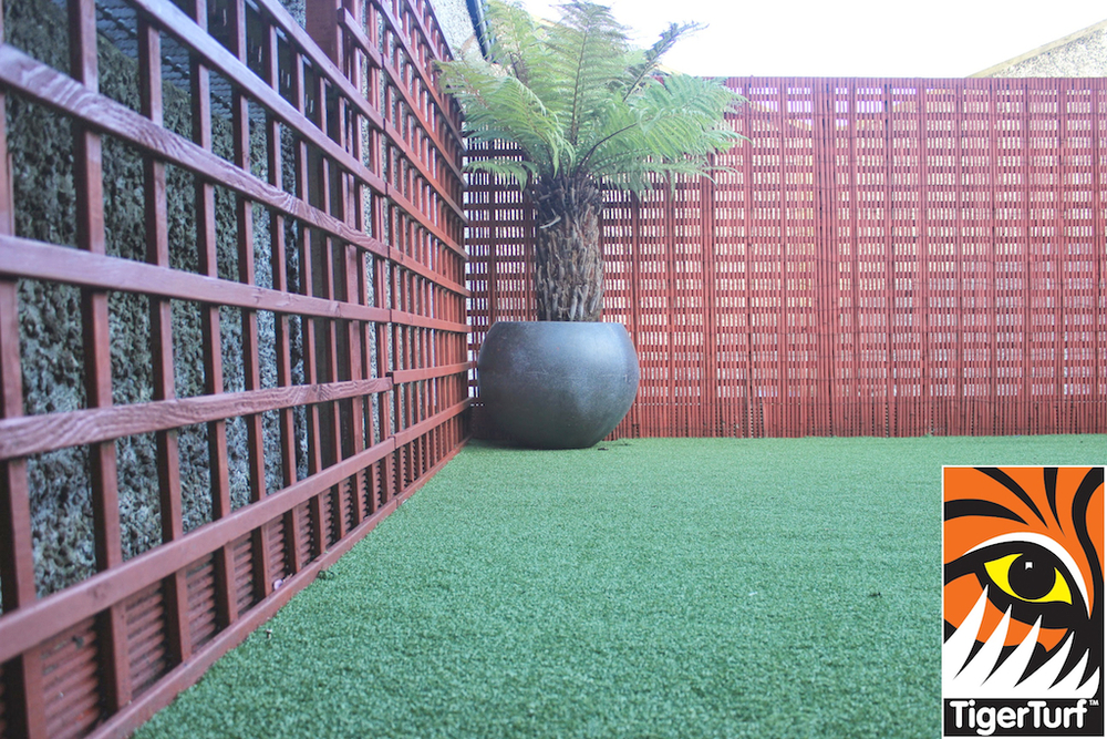 Synthetic grass in front lawn 90.jpg