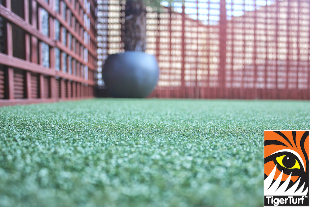 Synthetic grass in front lawn 79.jpg