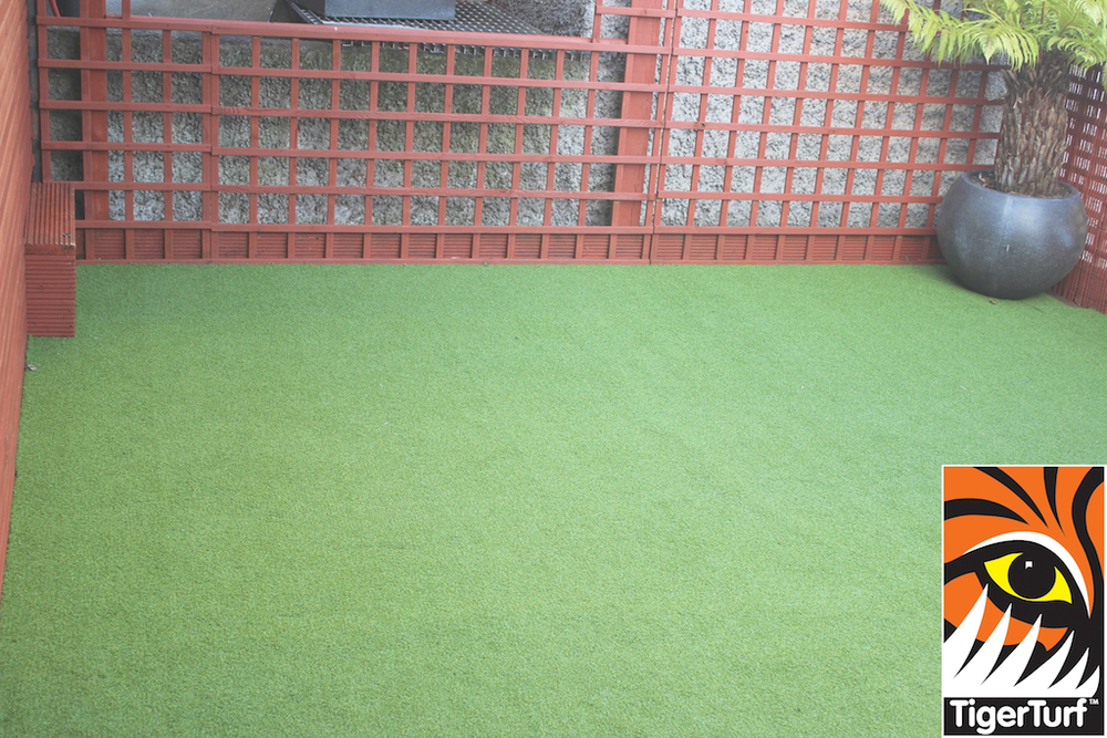 Synthetic grass in front lawn 25.jpg