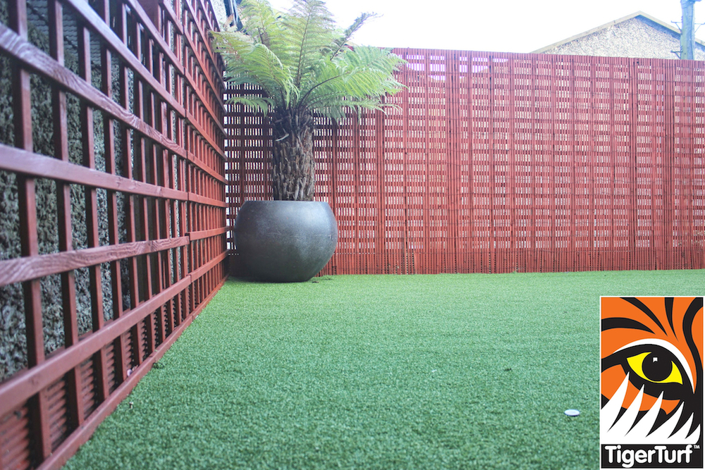 Synthetic grass in front lawn 107.jpg