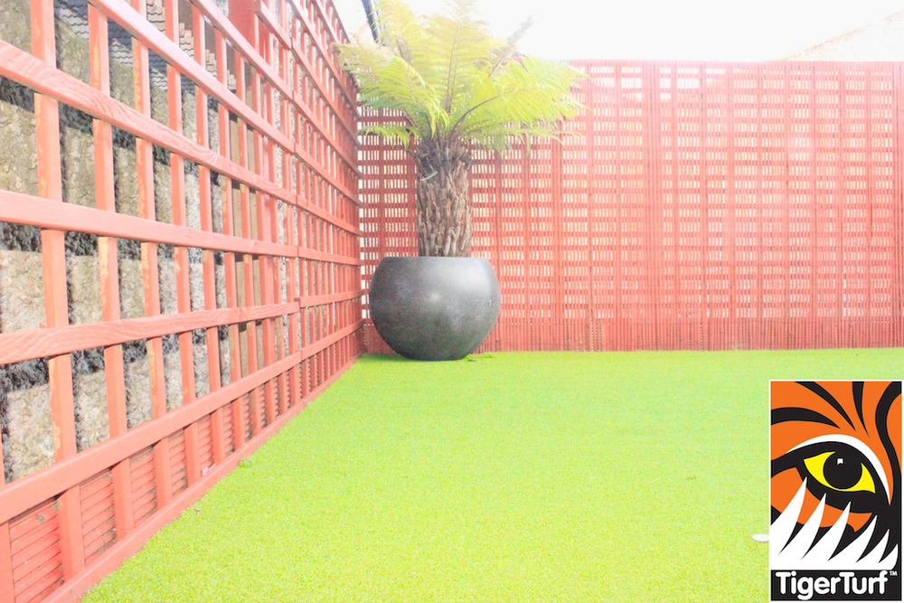 Synthetic grass in front lawn 93.jpg
