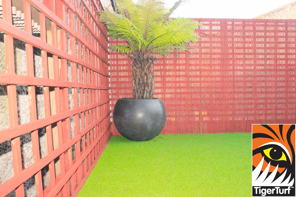 Synthetic grass in front lawn 73.jpg