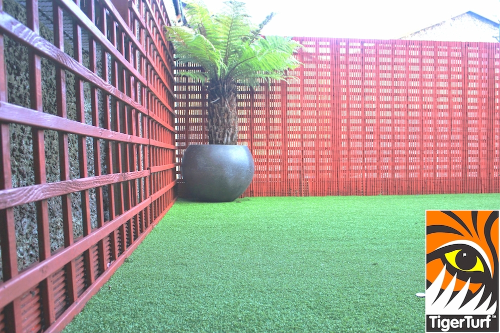 Synthetic grass in front lawn 101.jpg