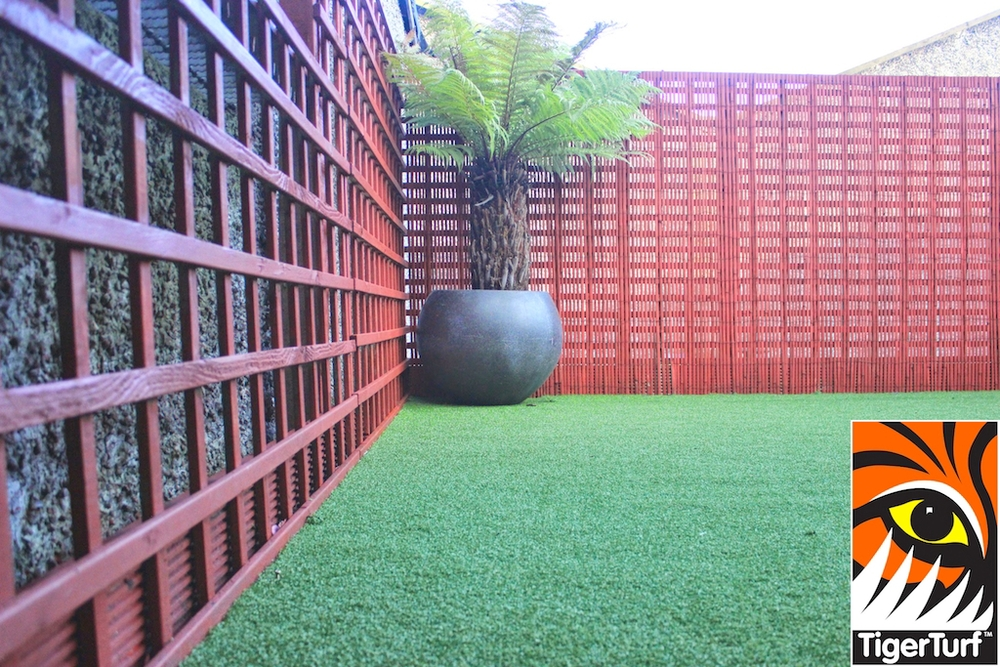 Synthetic grass in front lawn 103.jpg