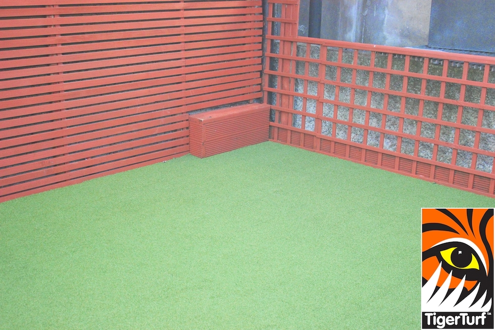 Synthetic grass in front lawn 6.jpg