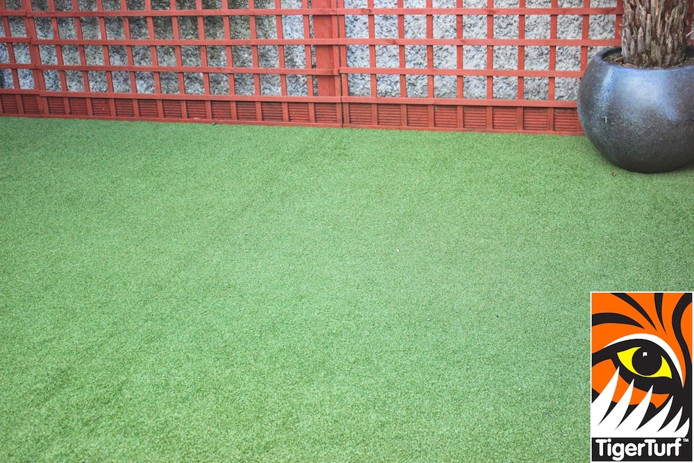 Synthetic grass in front lawn 17.jpg