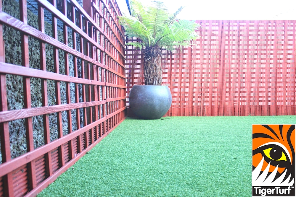 Synthetic grass in front lawn 88.jpg