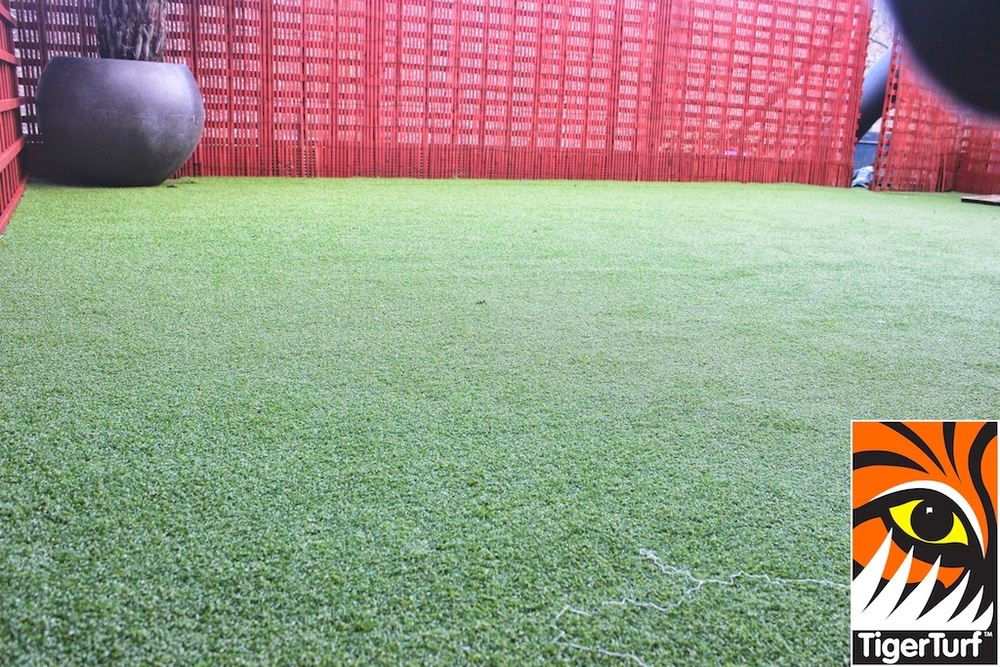 Synthetic grass in front lawn 111.jpg