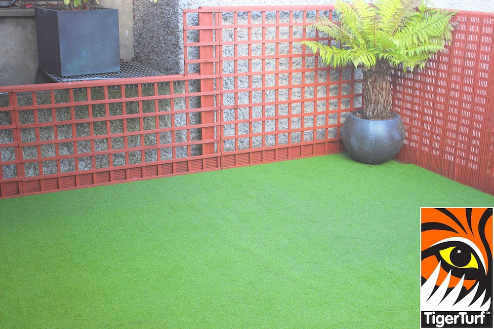 Synthetic grass in front lawn 27.jpg
