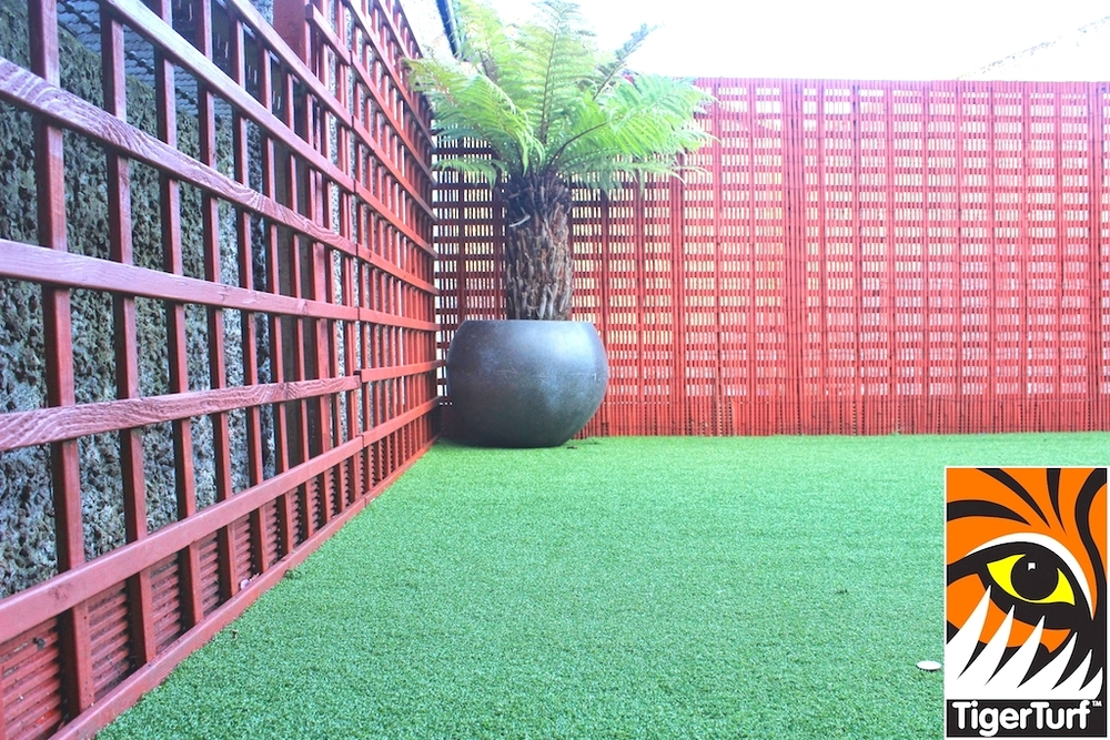 Synthetic grass in front lawn 99.jpg