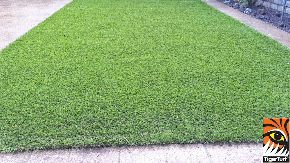 Synthetic grass in front lawn 44.jpg