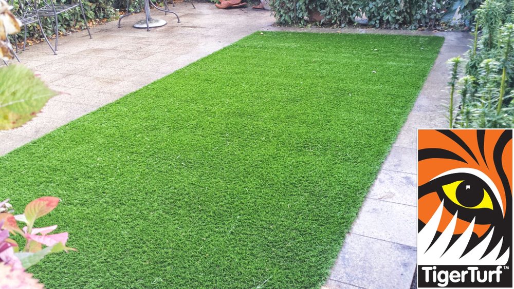 Synthetic grass in front lawn 48.jpg