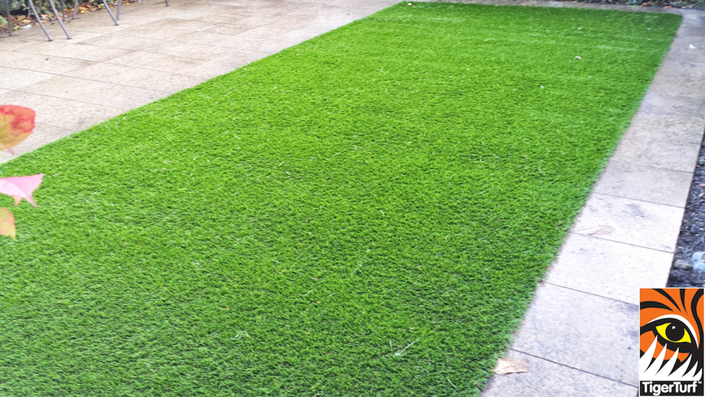 Synthetic grass in front lawn 49.jpg
