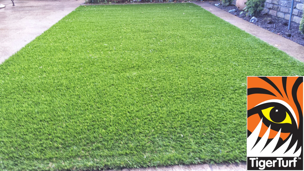 Synthetic grass in front lawn 43.jpg