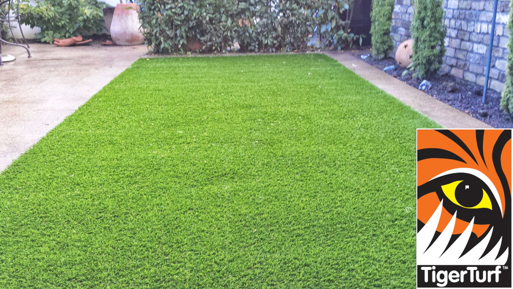 Synthetic grass in front lawn 41.jpg