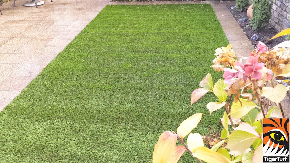 Synthetic grass in front lawn 15.jpg