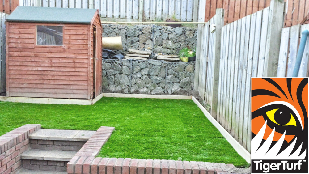 Synthetic grass in garden