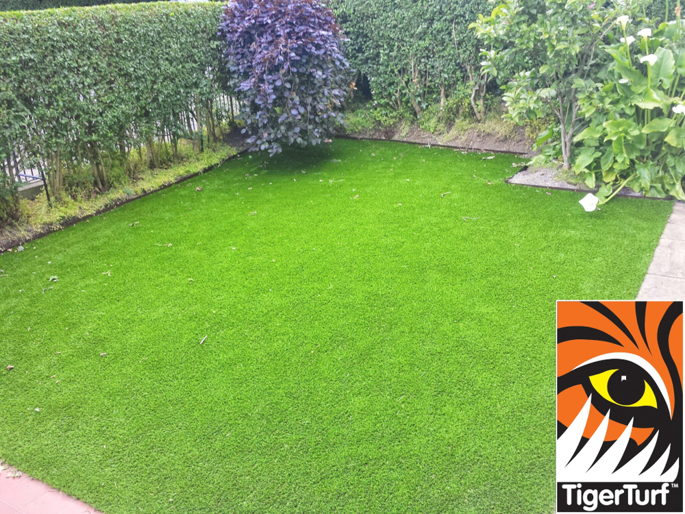 Synthetic grass in front lawn 35.jpg