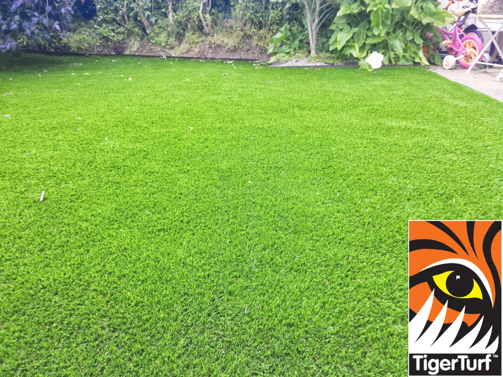 Synthetic grass in front lawn 29.jpg