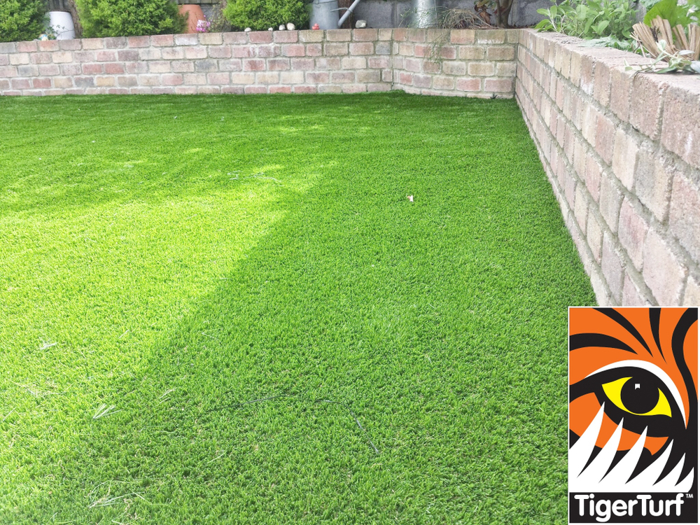 Synthetic TigerTurf Grass