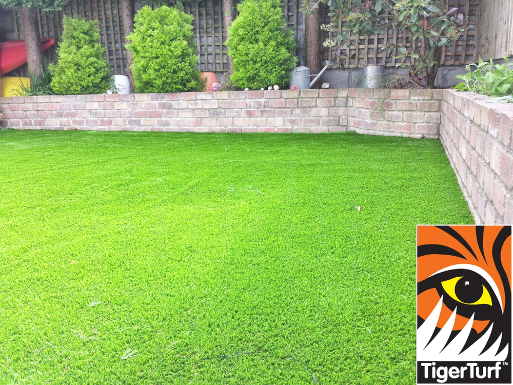 a newly installed synthetic lawn